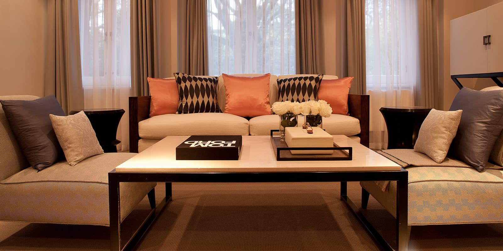 Large contemporary sofas and living room