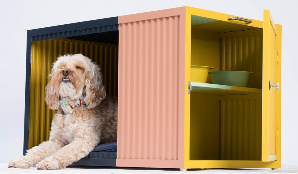 Designer Dog Kennel Bowwow Haus London Roselind Wilson Design