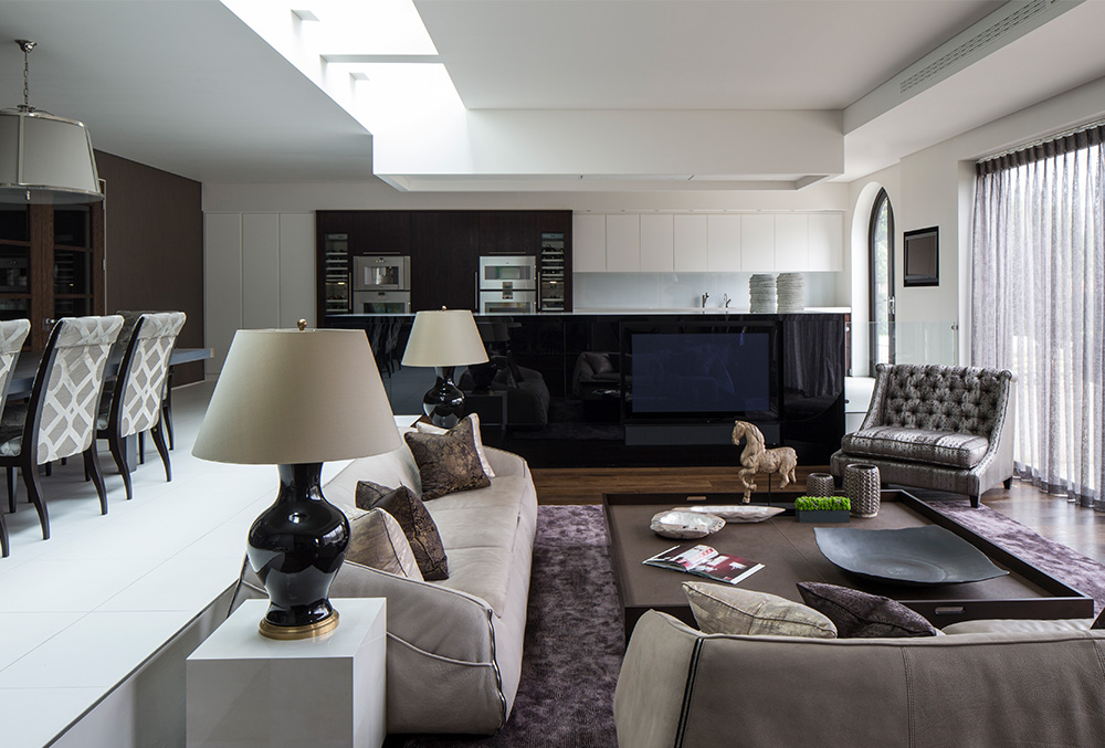 family entertaining space with kitchen and dining seating